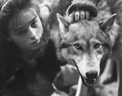 Company of wolves angela carter essay